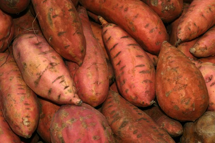 Clean Sweet Potatoes After Harvest