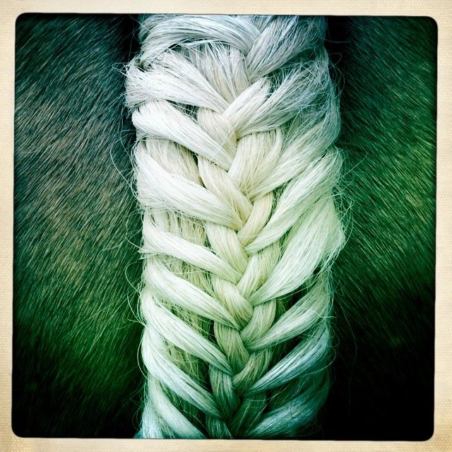 this is actually a a horse tail braid but wouldn't this look fantastic on human hair??! Must learn how to do this <3