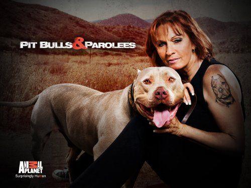 Pit Bulls & Parolees!