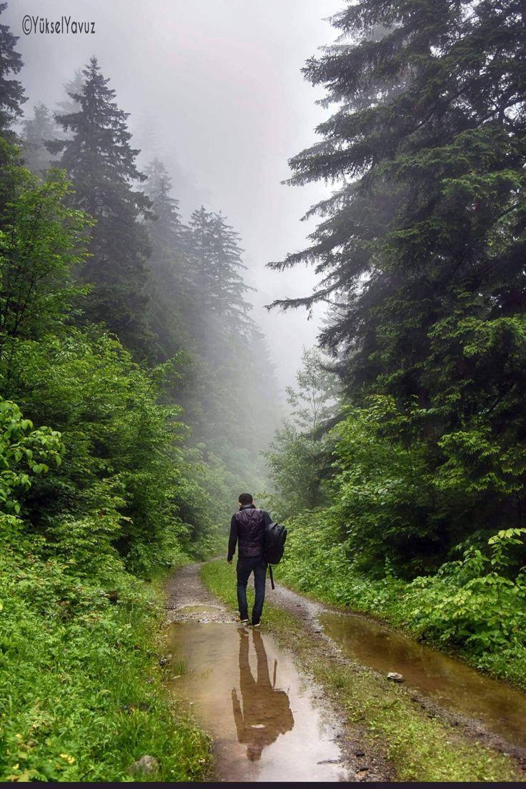 Araklı - Karadere Fotoğraf: Yüksel Yavuz
