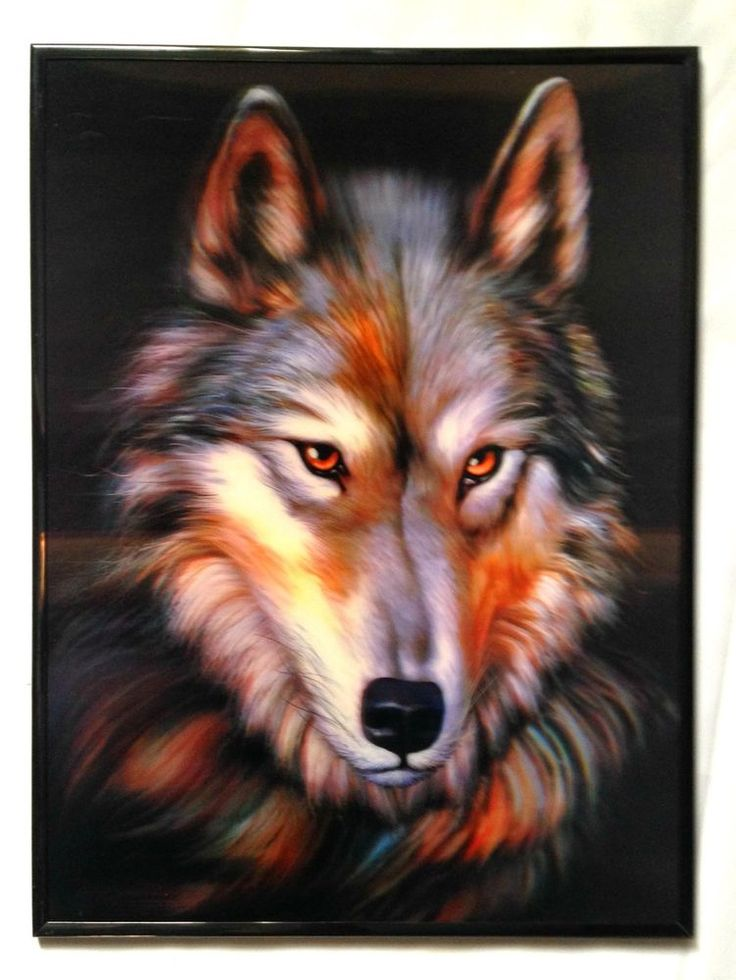 3D Lenticular Poster Framed Lone Wolf