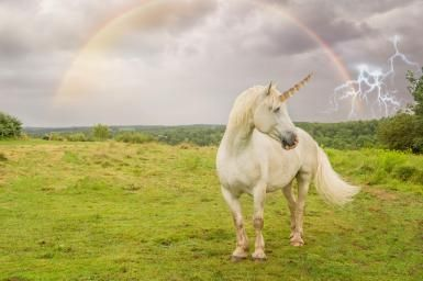 Do Unicorns Really Exist? Learn Some Unicorn Facts: Did unicorns ever exist? Outside of Photoshopped images that is?