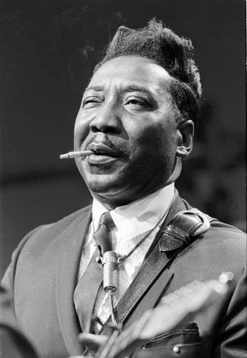 MCKINLEY MORGANFIELD AKA MUDDY WATERS McKinley Morganfield Born	April 4, 1913 Issaquena County, Mississippi, United States Died	April 30, 1983 (aged 70) Westmont, Illinois, United States Genres	Blues, Chicago blues, country blues, Delta blues, electric blues Occupation(s)	Singer, songwriter, guitarist, bandleader Instruments	Vocals, guitar, harmonica