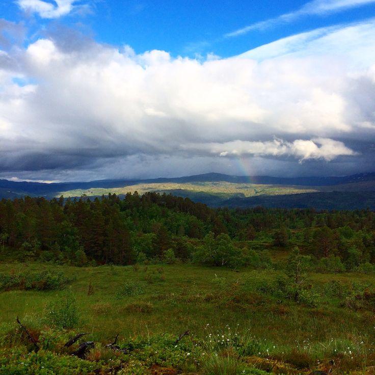 Fra Tørsåsen, med utsikt mot Trollheimen