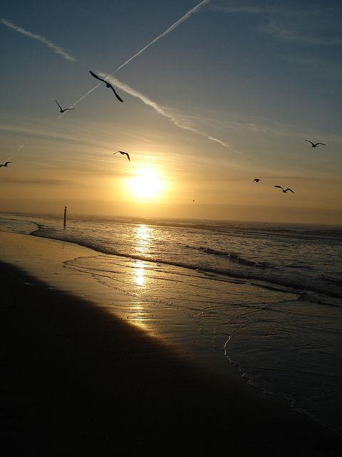 Citaten Over Zonsondergang : Beste ideeën over strand zonsondergang foto s op