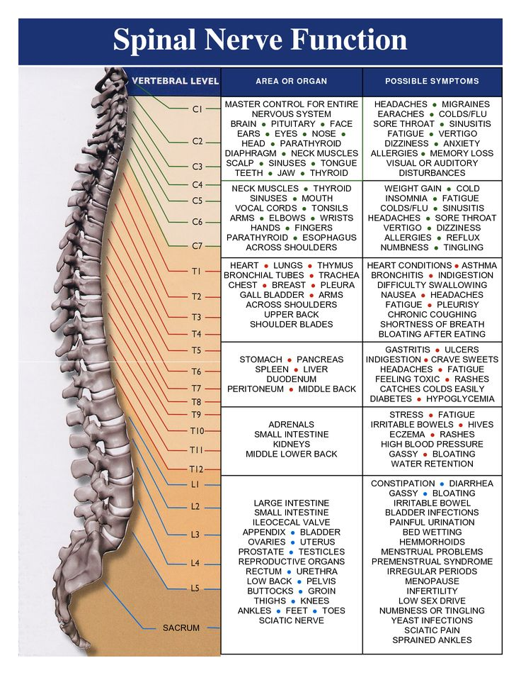 A healthy spine is important to your overall health and well-being. Regular…