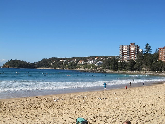 #Manly Beach     -   http://vacationtravelogue.com Best Search Engine For Hotels-Flights Bookings   - http://wp.me/p291tj-8K