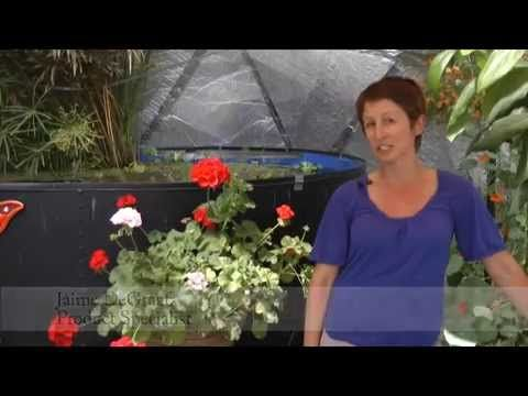 Greenhouses for Sale: Find the right Greenhouse for you