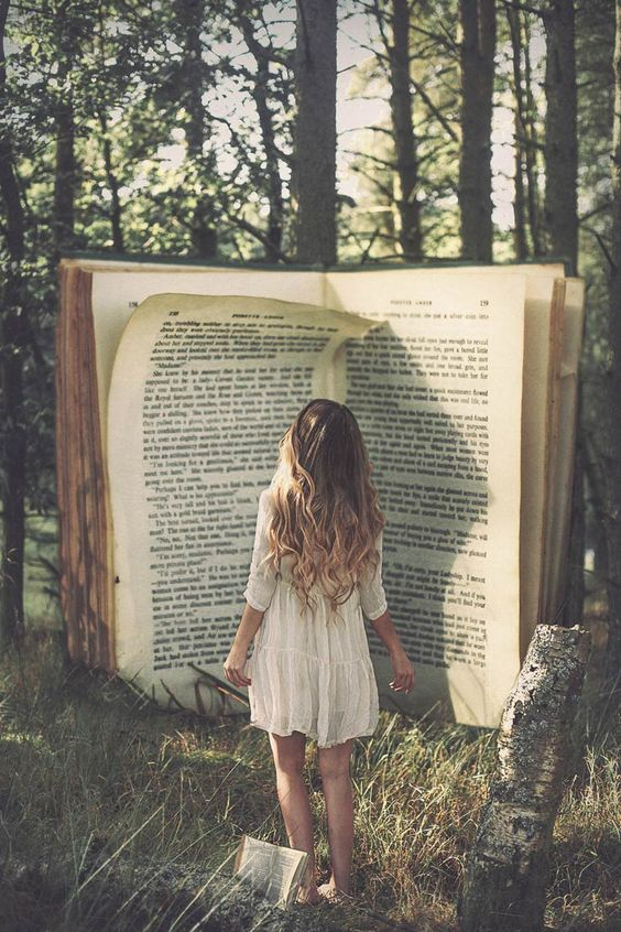 magic | books | fairy tale | forest |