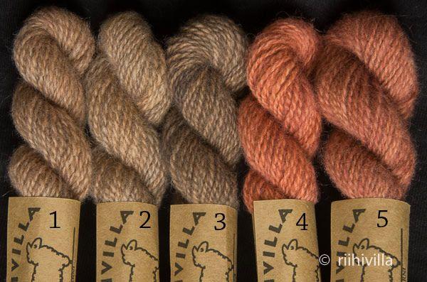 Riihivilla, Dyeing with natural dyes: The effect of iron on some dyes Rautapuretuksen vaikutus joihinkin väreihin