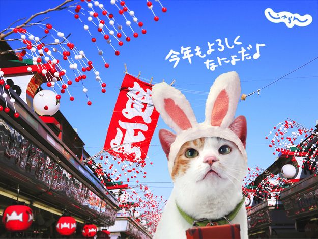 17 best images about japanese advertising on pinterest for Advertising agency tokyo