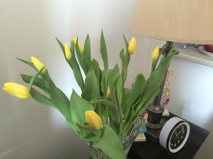 Spring is coming soon!