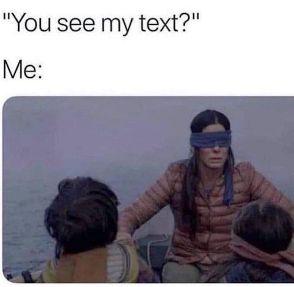 Image result for bird box memes did you see my text
