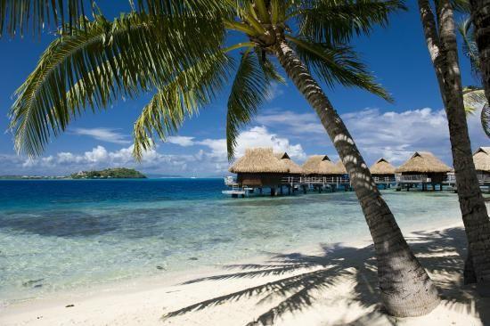 Book Maitai Polynesia Bora Bora, Bora Bora on TripAdvisor: See 329 traveler reviews, 1,235 candid photos, and great deals for Maitai Polynesia Bora Bora, ranked #9 of 17 hotels in Bora Bora and rated 4 of 5 at TripAdvisor.