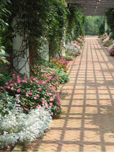 Beautiful Daniel Stowe Botanical Garden