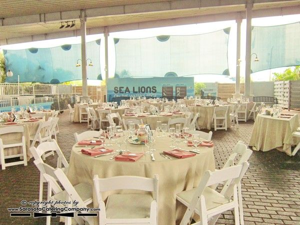 Mote Marine Aquarium Wedding In Sarasota Fl By Catering Company 1256