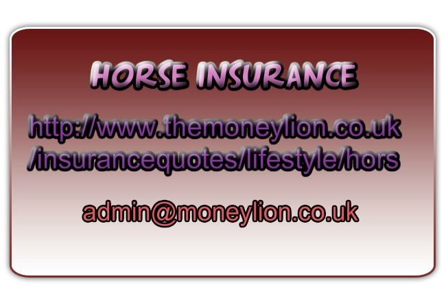 http://www.themoneylion.co.uk/insurancequotes/lifestyle/horseinsurance Horse insurance