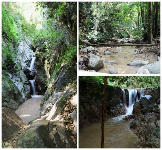 Domingo por la mañana, nos levantamos y decidimos donde ir a dar un paseo. Nos acordamos de un salto de agua en el Montseny, que habíamos e...