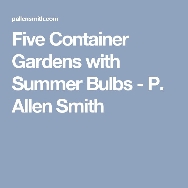 Five Container Gardens with Summer Bulbs - P. Allen Smith