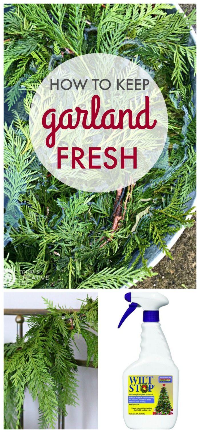How To Keep Garland Fresh Diy Christmas Garland Fresh Christmas Wreath Real Christmas Wreaths