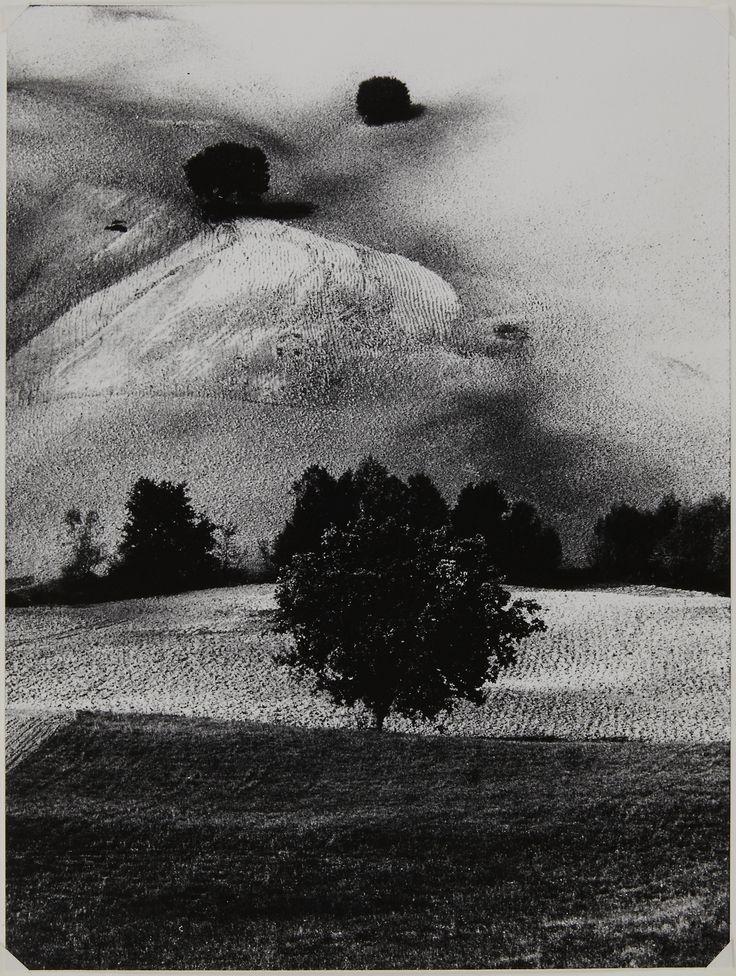 """ Mario Giacomelli N° 14 1958 """