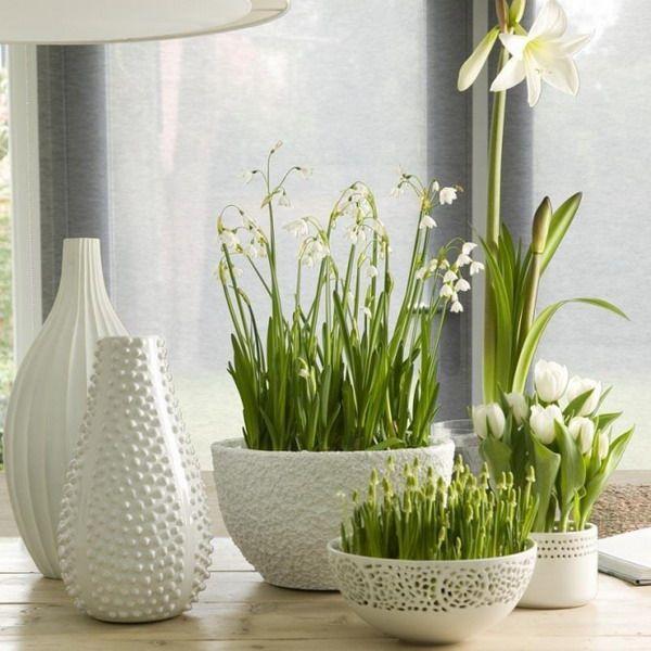 Если к массивной доске добавить красивую, контрастную деревянную мебель, вы увидите, как Ваш дом сразу преобразиться, наполнится светом, теплом и гостеприимностью. Добавьте в интерьер небольшие, красивые детали: занавески из натуральных тканей, фигурки из глины, фотографии или картины, все это, создаст неповторимый интерьер. Не забудьте добавить цветы в креативных горшках, именно они станут завершающим элементом в натуральном, уютном интерьере.