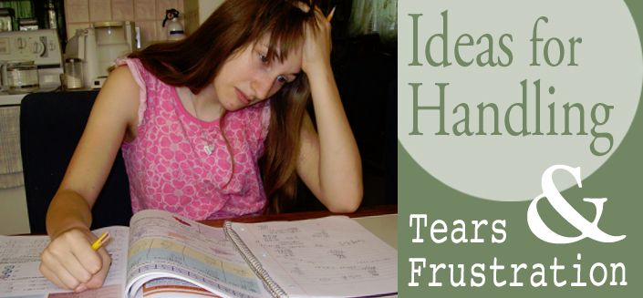 Ideas for Handling Tears and Frustration | All About Learning Press