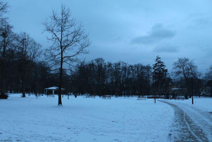 Wejherowo - Park Majkowskiego  #Wejherowo #Park #Photography #ILovePhoto