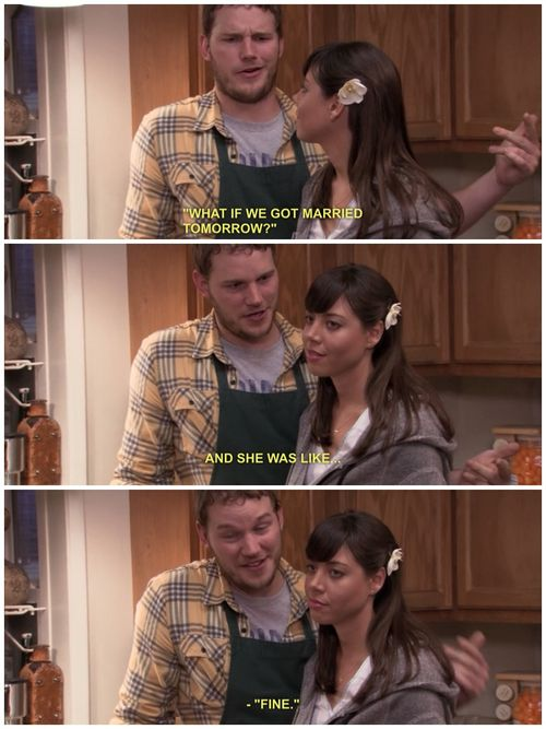 parks and recreation meme andy april relationship