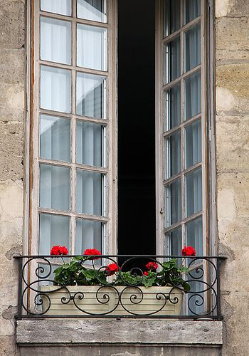 A flower box sits on a lovely wrought iron balcony in Paris | Flickr/johnhayes5032       ᘡղbᘠ