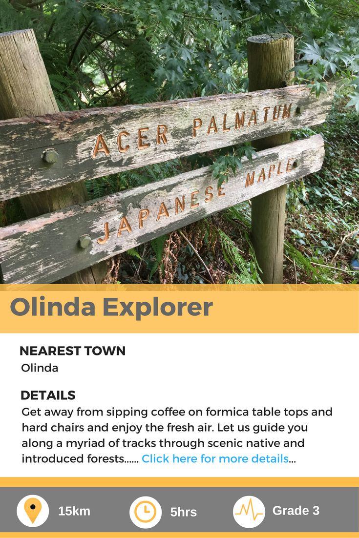 Olinda Explorer, a fantastic forest walk in the heart of Victoria, Australia.