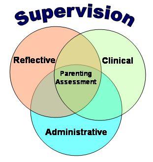 Professional supervision