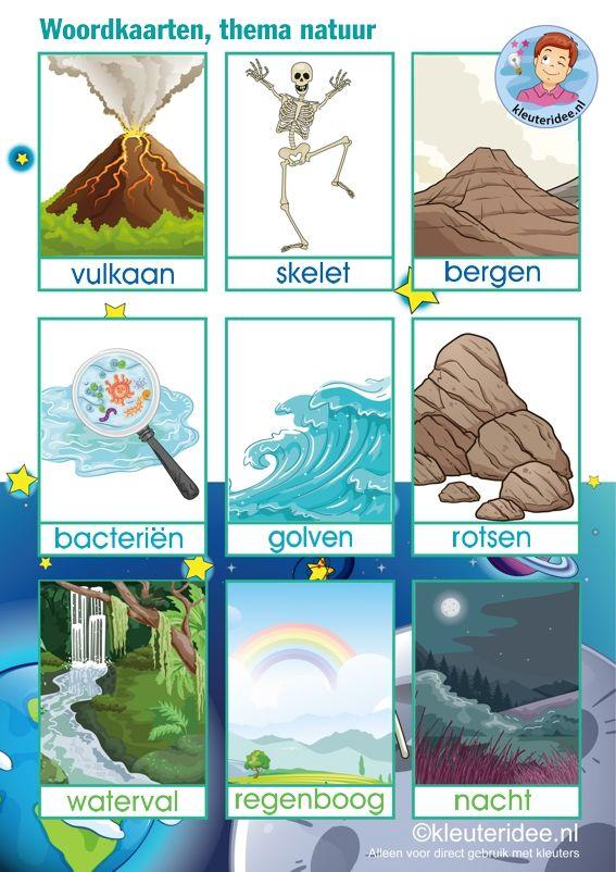 Woordkaarten 'Raar maar waar', thema natuur, wetenschap en techniek voor kleuters, kinderboekenweek 2015 kleuteridee, free printable.