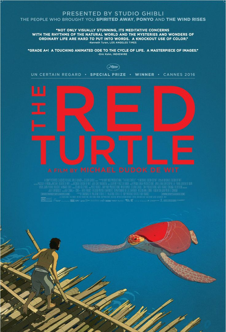 ADIFF Review THE RED TURTLE The red turtle, Turtle