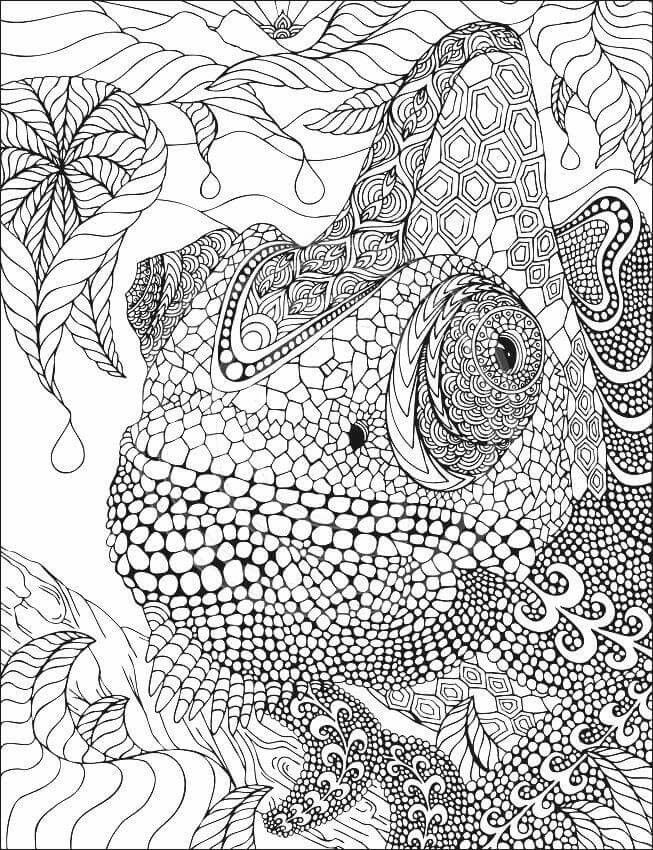The 218 Best Animaux Coloriage Pour Adulte Images On Pinterest