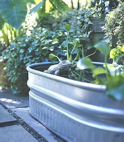 1000 Images About Galvanized Tubs On Pinterest Gardens