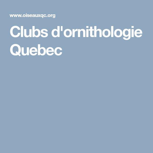 Clubs d'ornithologie Quebec #parrot #petbirds #companionparrot #birdclub
