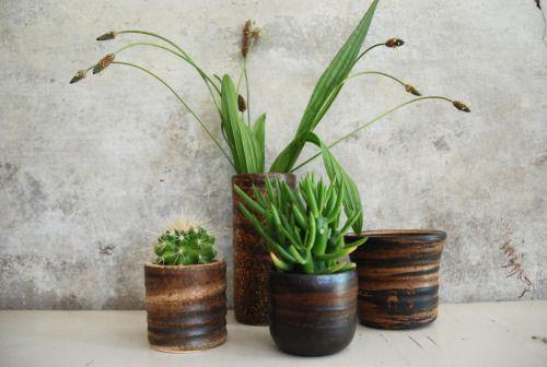 Mobach, Ravelli, pots, cactus, ceramics, Peaceful Ranch