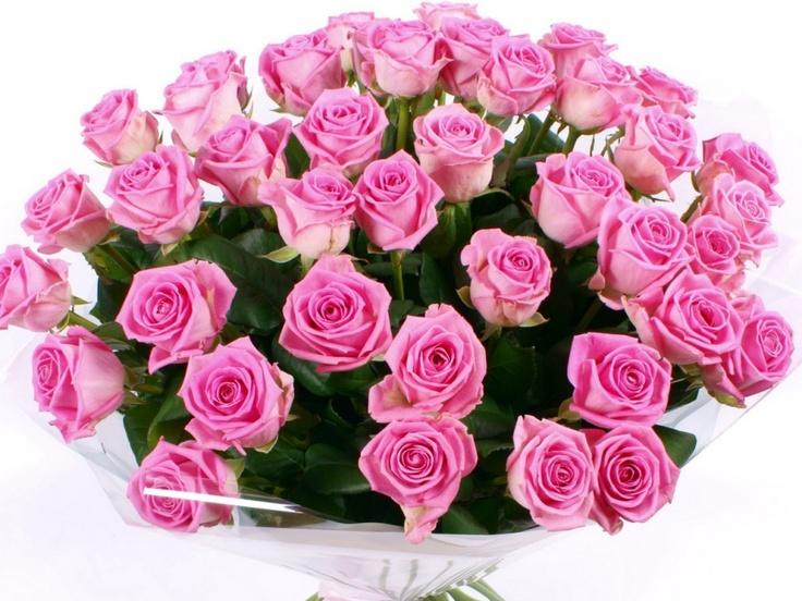 Pink Rose: Τα ροζ τριαντάφυλλα αντιπροσωπεύουν τρυφερά συναισθήματα, όπως η χαρά, η ευχαρίστηση, ο θαυμασμός. Το ανοιχτόχρωμα ροζ μπουμπούκια είναι σύμβολο της αθωότητας. Επειδή συνδέονται με την χάρη και τη γλυκύτητα είναι ιδανικό δώρο για κορίτσια. Το σκούρο ροζ συμβολίζει βαθιά ευγνωμοσύνη και εκτίμηση. Επίσης, τα ροζ τριαντάφυλλα εκφράζουν κομψότητα και ευτυχία.