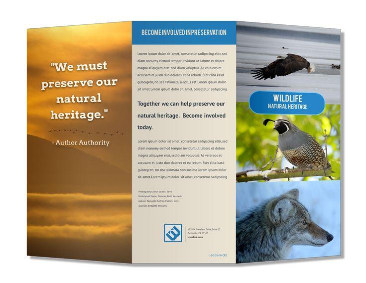 Free Brochure Maker Online | Lucidpress