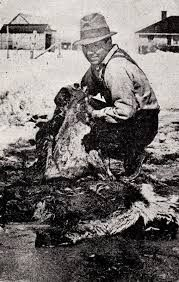 Related image. Bear River Massacre - LDS Freedom Forum LDS Freedom Forum508 × 799Search by image Image