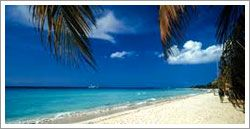 Negril, Jamaica is the most beatiful place I've ever been. It truly does look just like the picture. Go there!