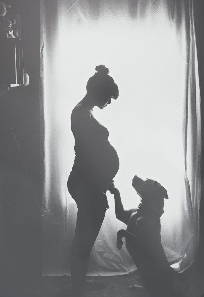 Babybauchfotos make yourself-pregnancy-photos-ideas-tips-black-and-white-dog – #…