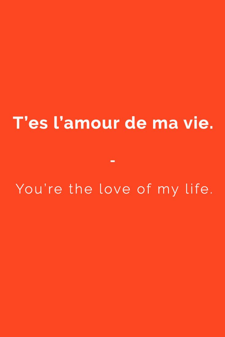 Tu es l'amour de ma vie. -  You're the love of my life. | Get a copy of the most complete French phrasebook here: https://store.talkinfrench.com/product/french-phrasebook/