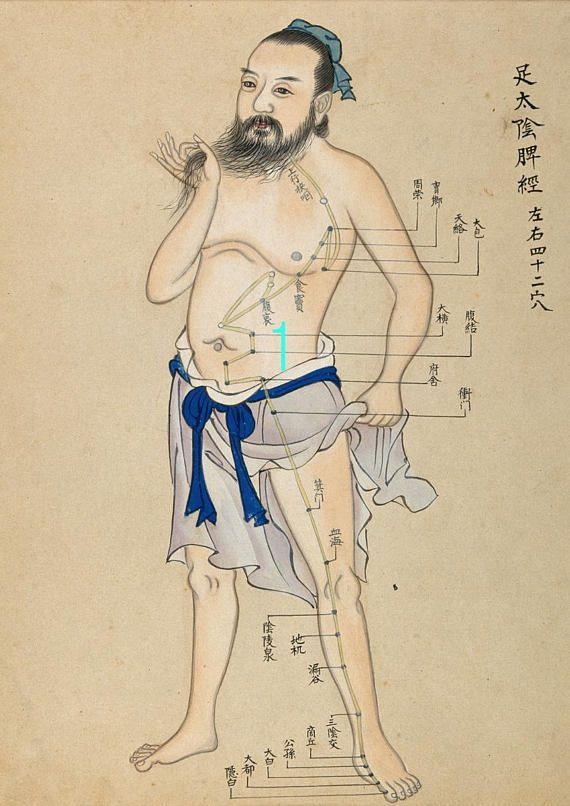 Asian Fine Art Print-Diagram of Acupuncture