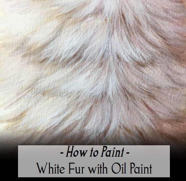 How To Paint White Fur With Oil Paint Pdf Danielle Trudeau White Painting Oil Painting Painting Fur