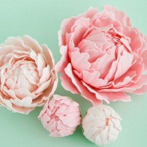 """this is what I call """"edible arrangements"""" http://cakejournal.com/tutorials/how-to-make-a-gum-paste-peony-part-1/"""