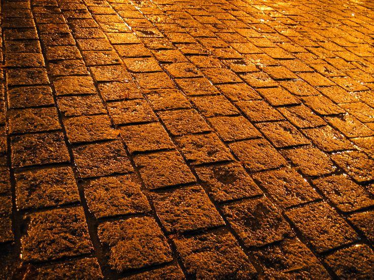 보문단지 길바닥