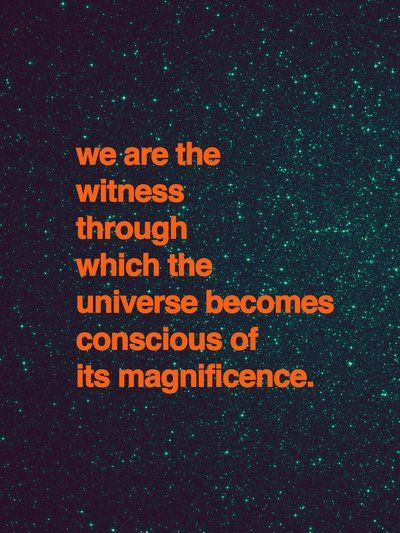 We are the witness through which the universe becomes conscious of its magnificence.