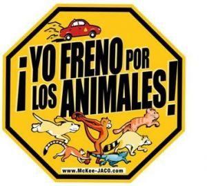 """""""YO FRENO POR LOS ANIMALES"""" http://desktopcostarica.com/articulos/novedades-del-proyecto-yo-freno-por-los-animales"""
